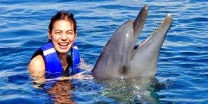 Swim Encounter with Dolphins at Ocean Adventure Subic